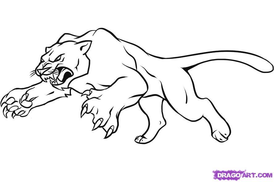 Image de cougar a imprimer et colorier