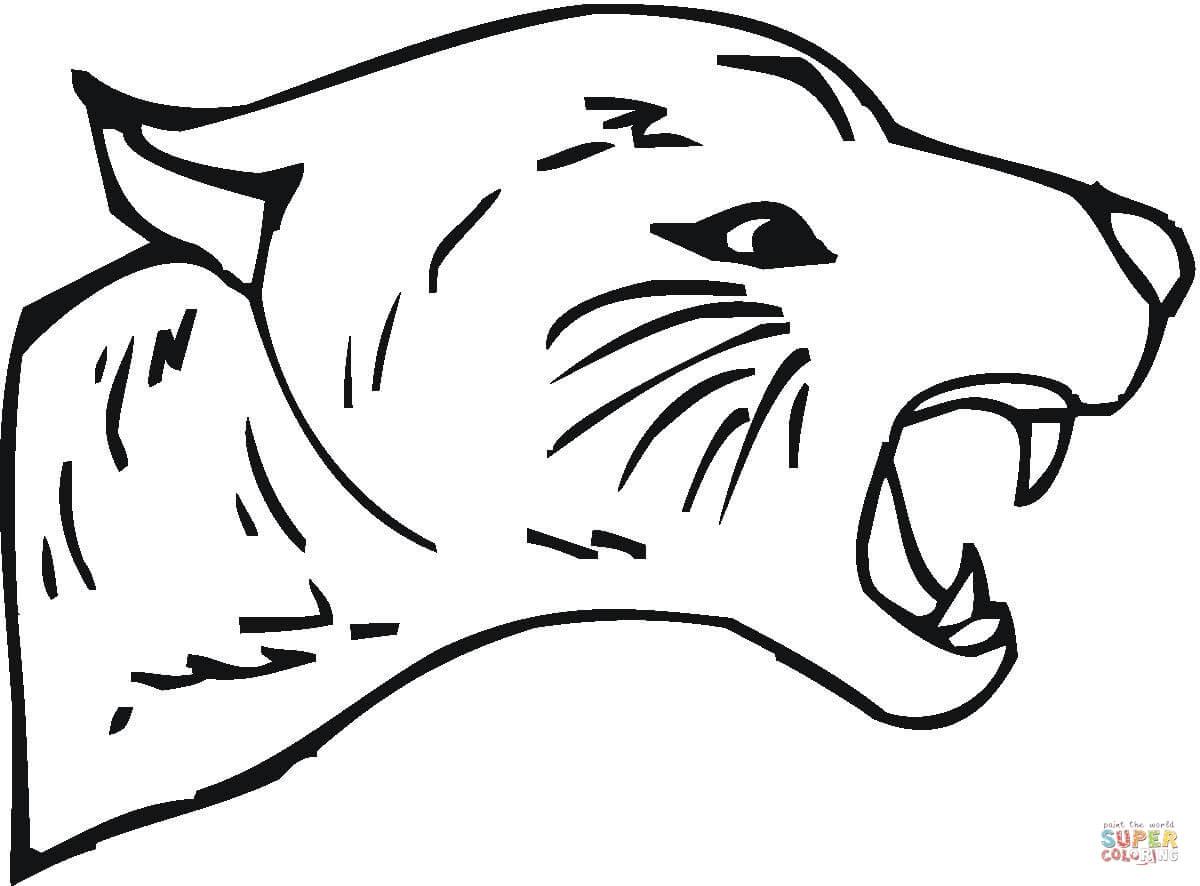 Coloriage gratuit de cougar à imprimer