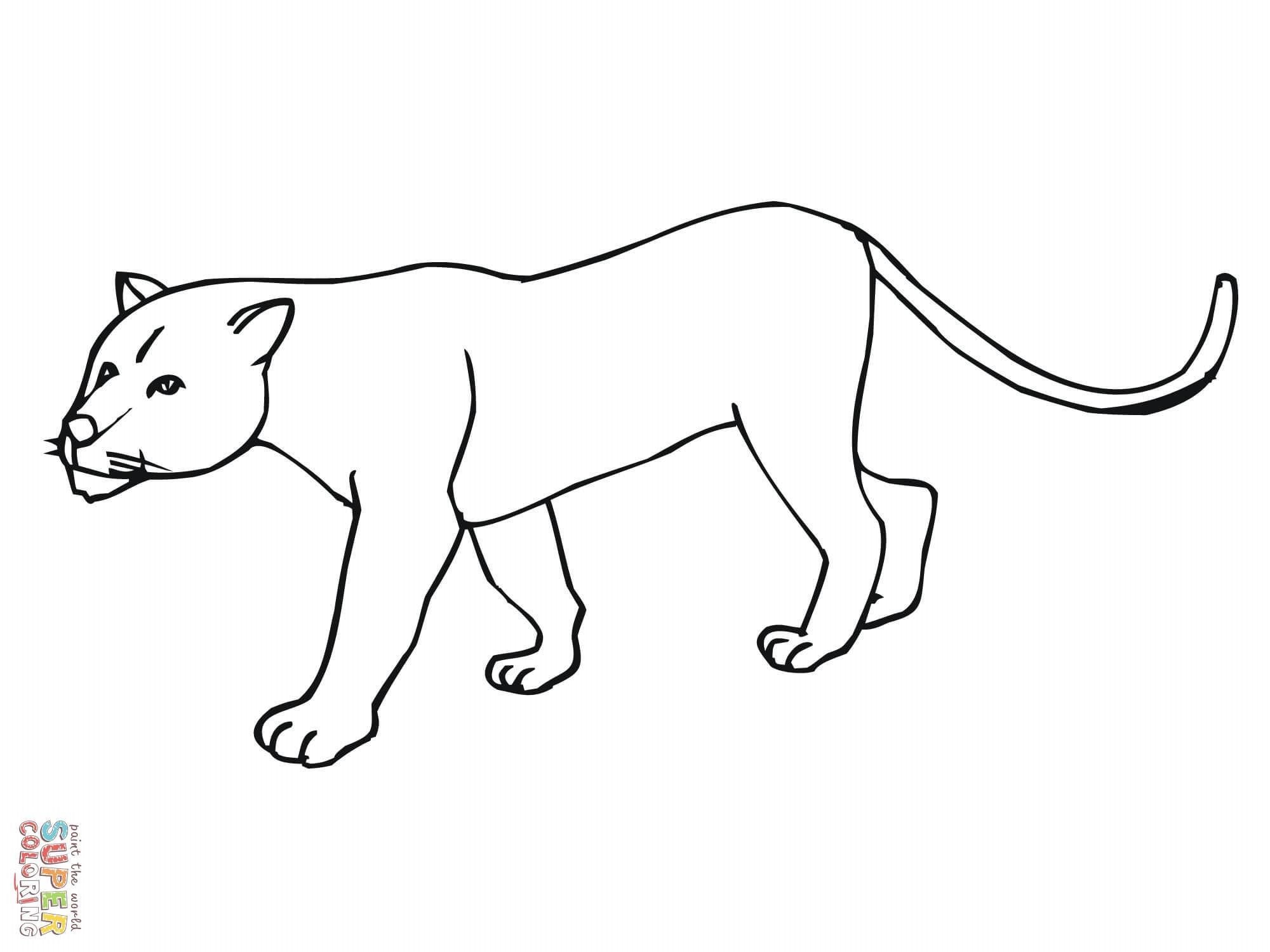 Dessin de cougar a colorier et imprimer
