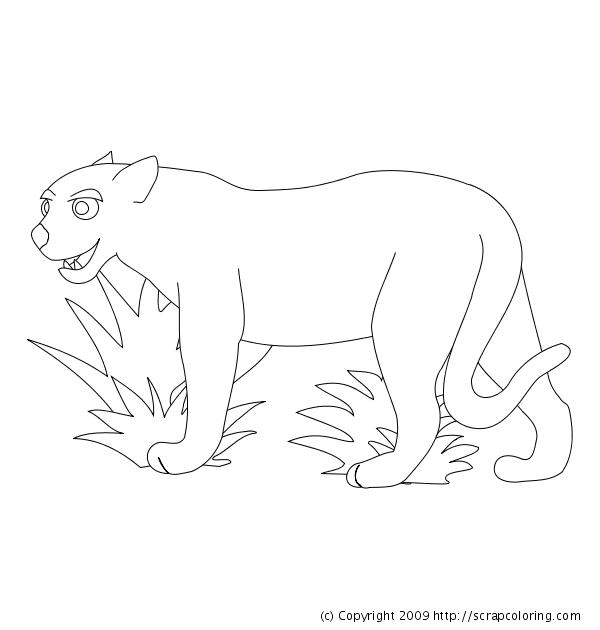 Coloriage de cougar gratuit