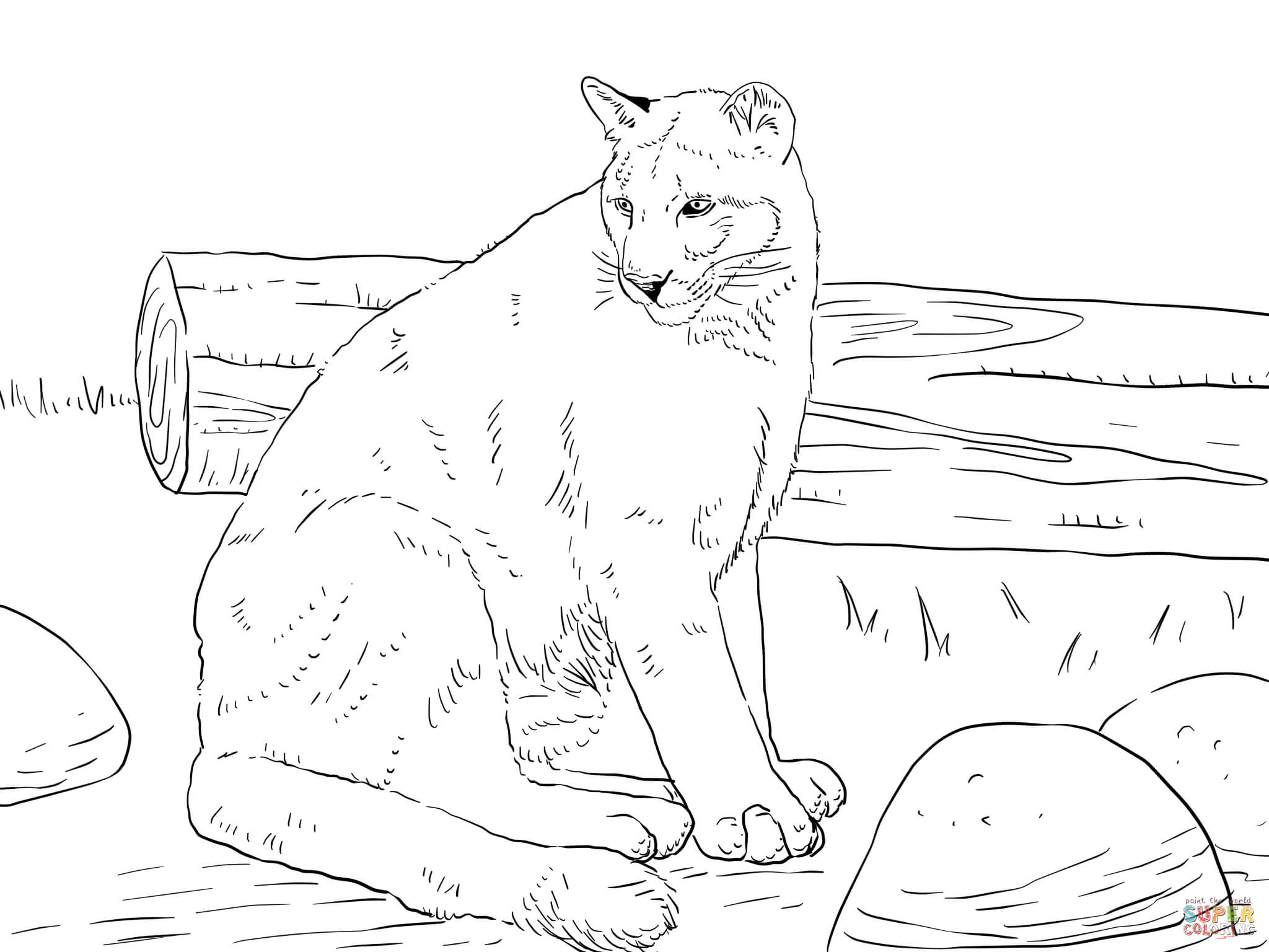 Coloriage de cougar a colorier