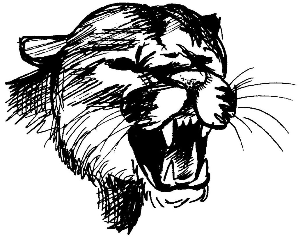 Dessin de cougar gratuit a imprimer et colorier