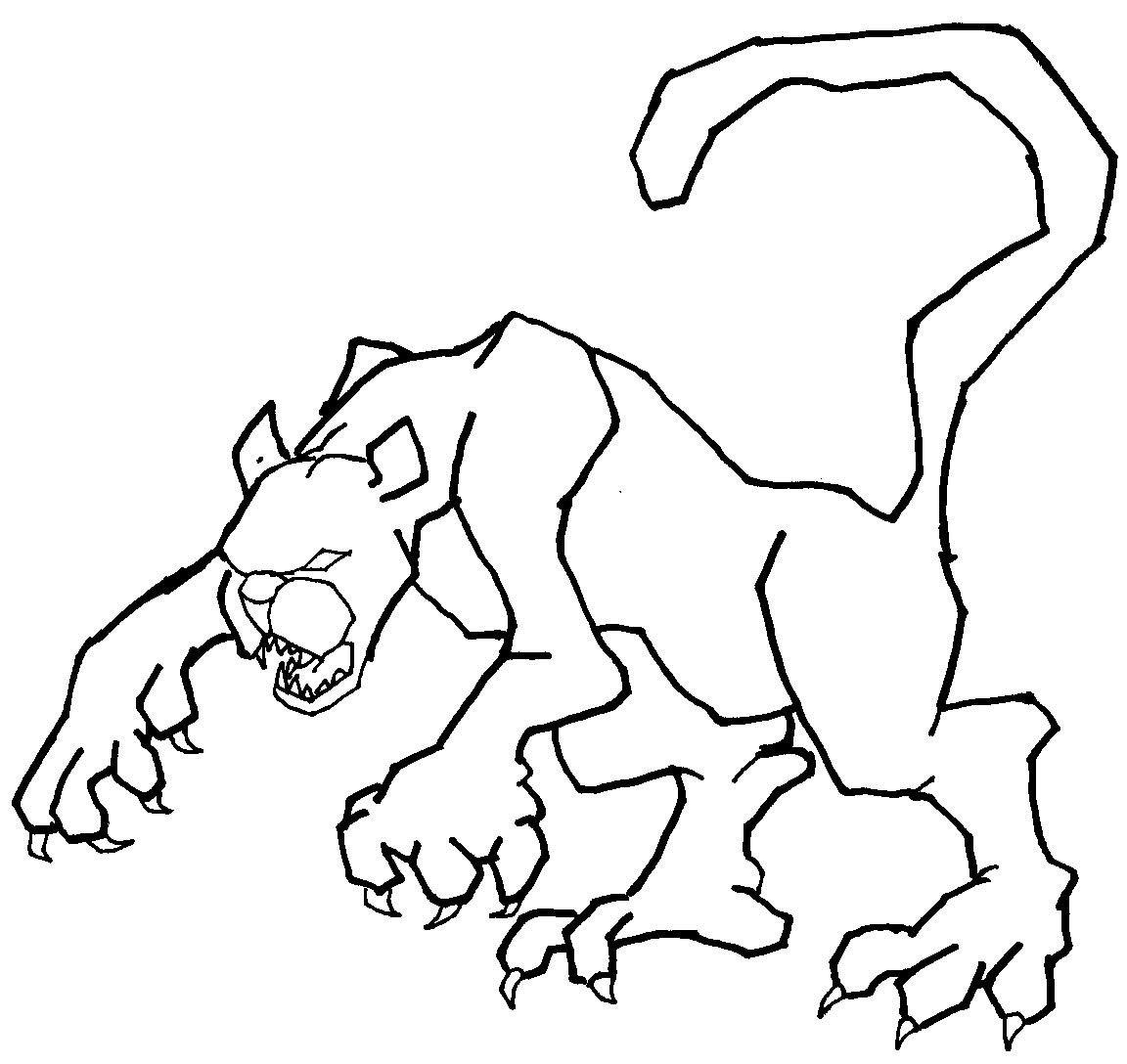 Dessin de cougar