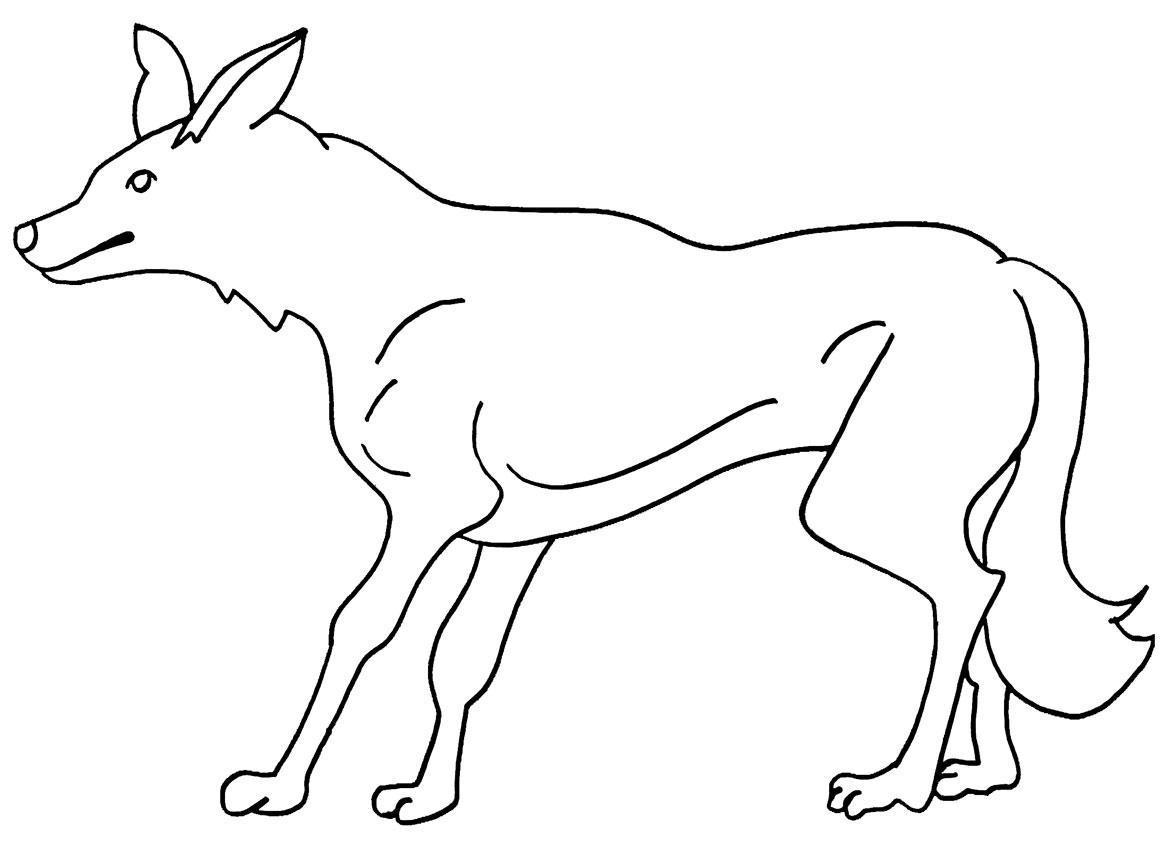 s lection de coloriage coyote imprimer sur. Black Bedroom Furniture Sets. Home Design Ideas