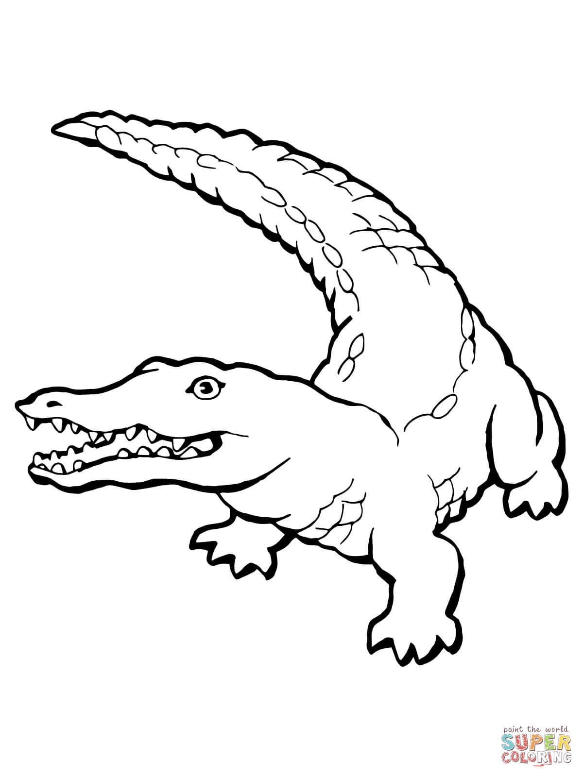 Coloriage de crocodile imprimer et colorier