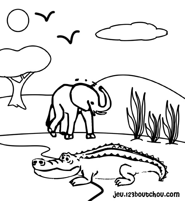 Dessin de crocodile