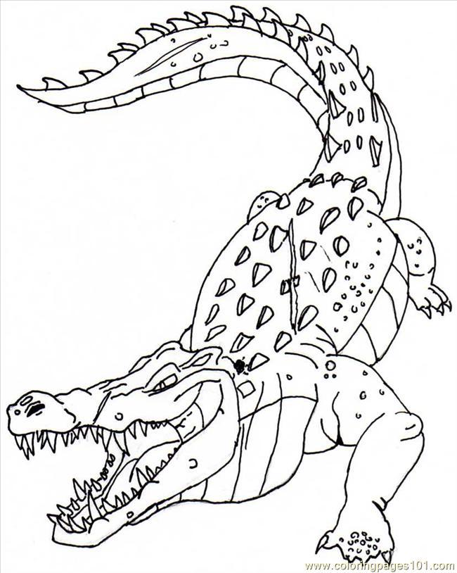 Coloriage de crocodile gratuit a imprimer