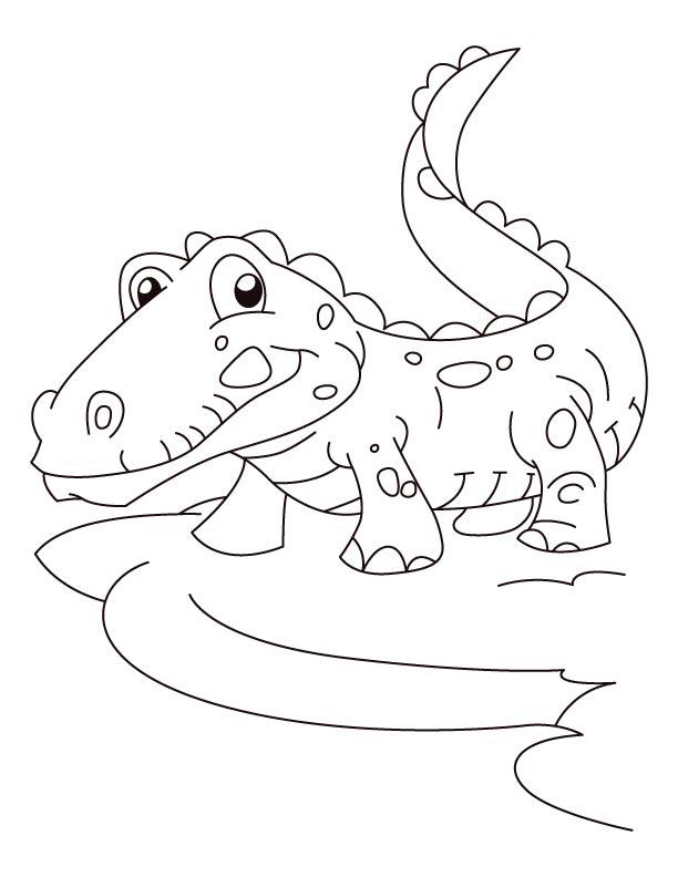 Dessin de crocodile pour imprimer et colorier