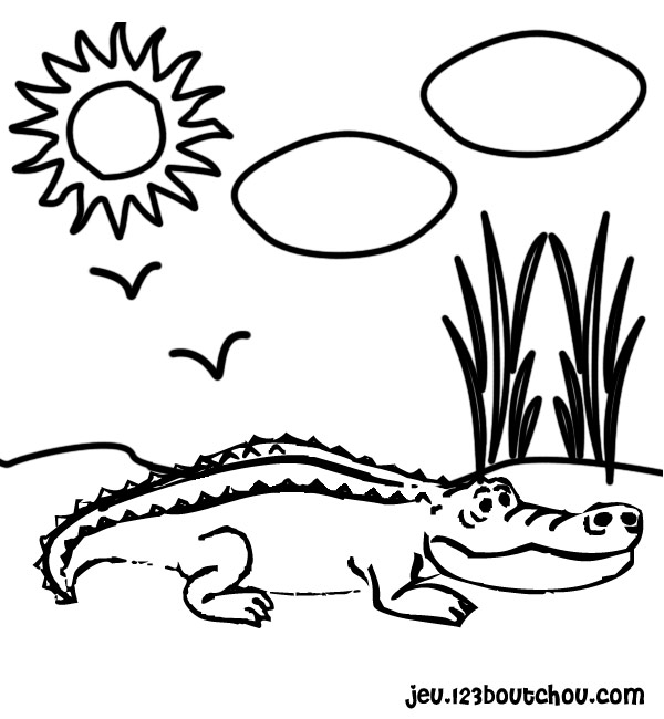 Coloriage de crocodile à colorier