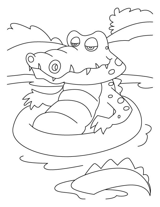 Coloriage de crocodile gratuit à imprimer et colorier