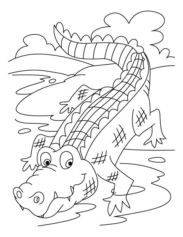 Image de crocodile a imprimer et colorier