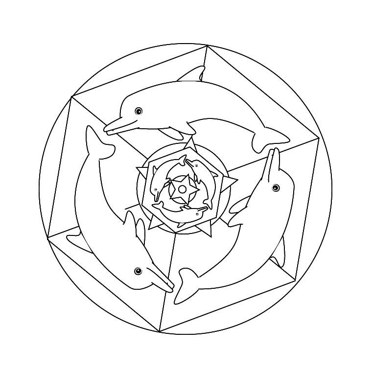 Dessin de dauphin à imprimer