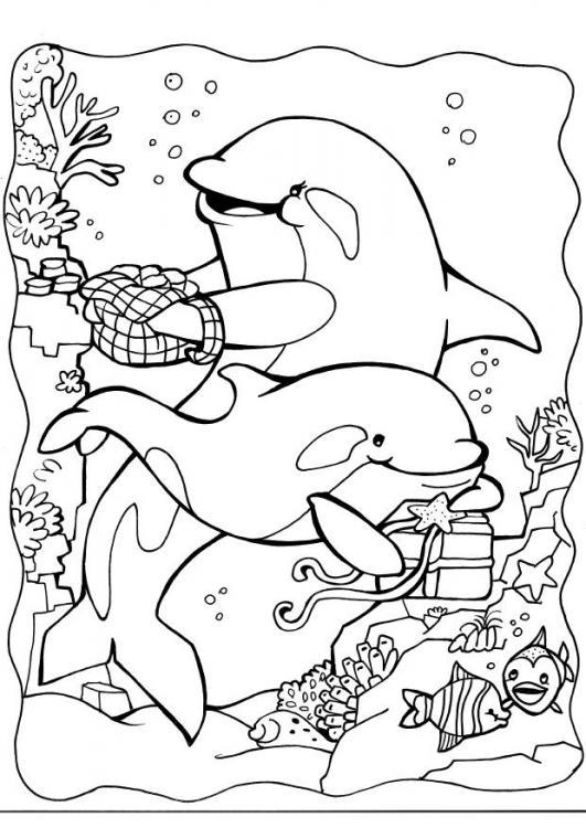 Dessin gratuit de dauphin a colorier