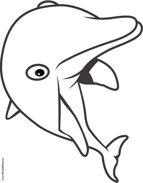 Image de dauphin a dessiner