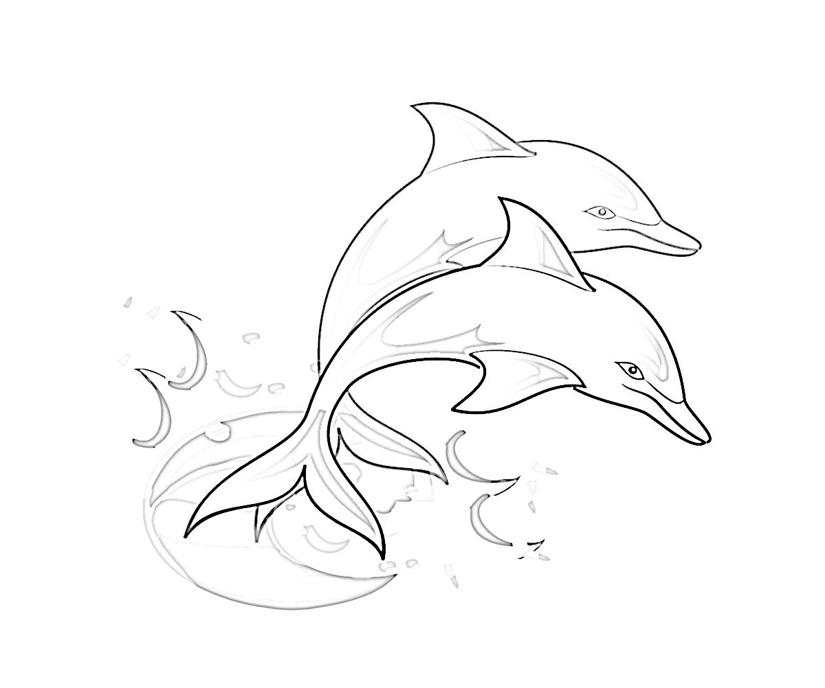 Coloriage de dauphin gratuit