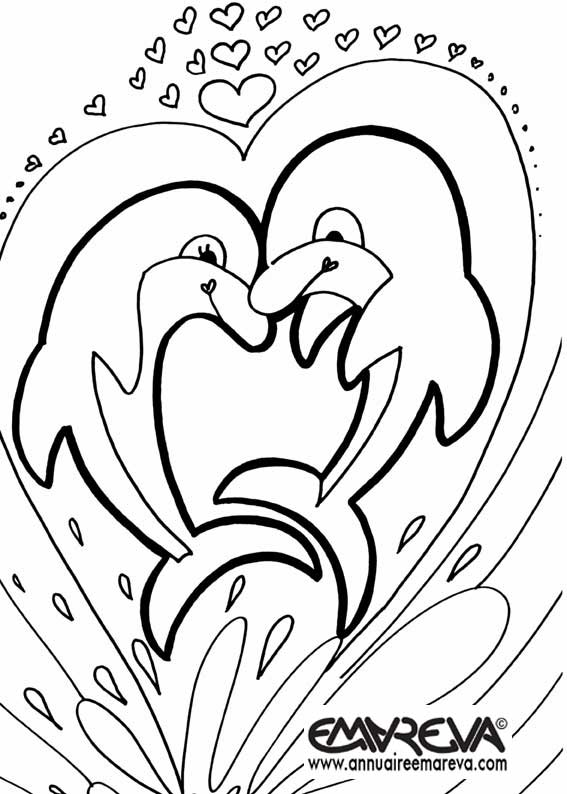 17426 Ravensburger also  together with dolphin 8 coloring page further  additionally  besides 7 1324 moreover  additionally baby chicken cute animal coloring sheet furthermore 0 1535 also  besides . on realistic dolphin coloring pages printable
