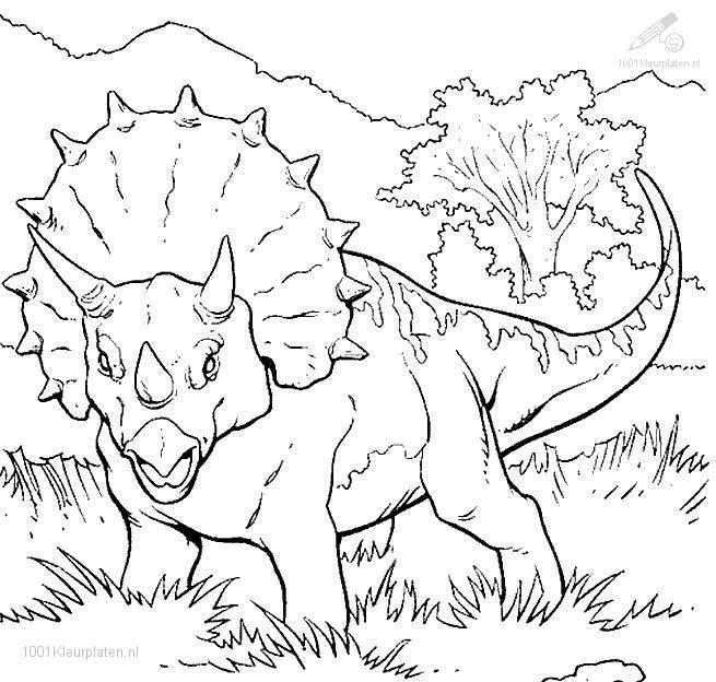 Dessin de dinosaure à colorier