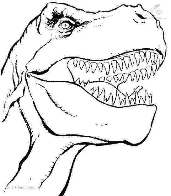 Coloriage de dinosaure gratuit a imprimer