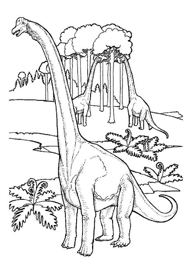 Dessin gratuit dinosaure a imprimer et colorier