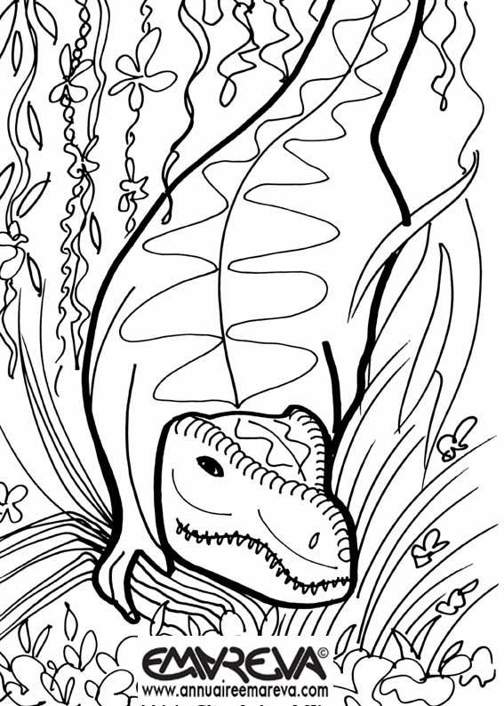 204 dessins de coloriage dinosaure imprimer sur - Tyrex coloriage ...