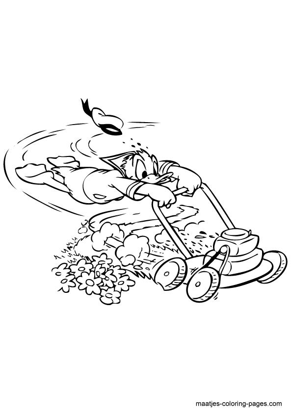 Coloriage donald duck gratuit - dessin a imprimer #237