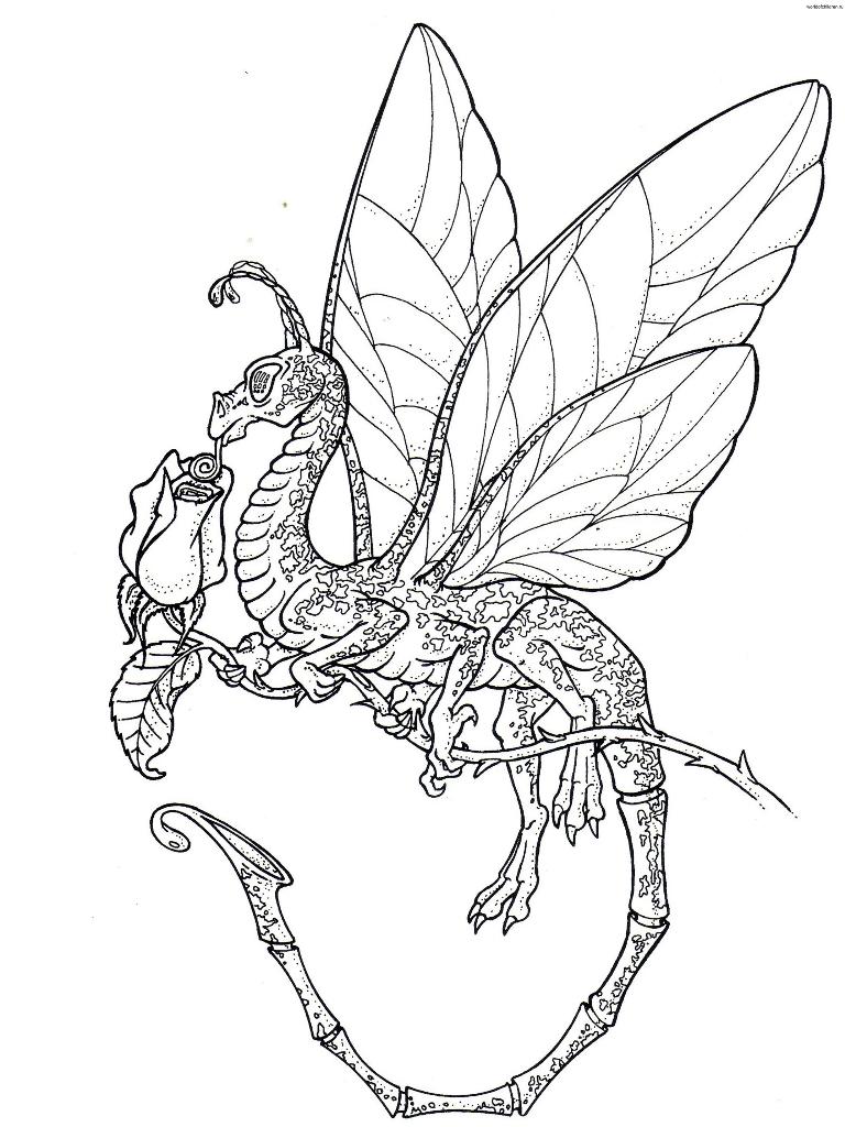 157 dessins de coloriage dragon imprimer sur laguerche