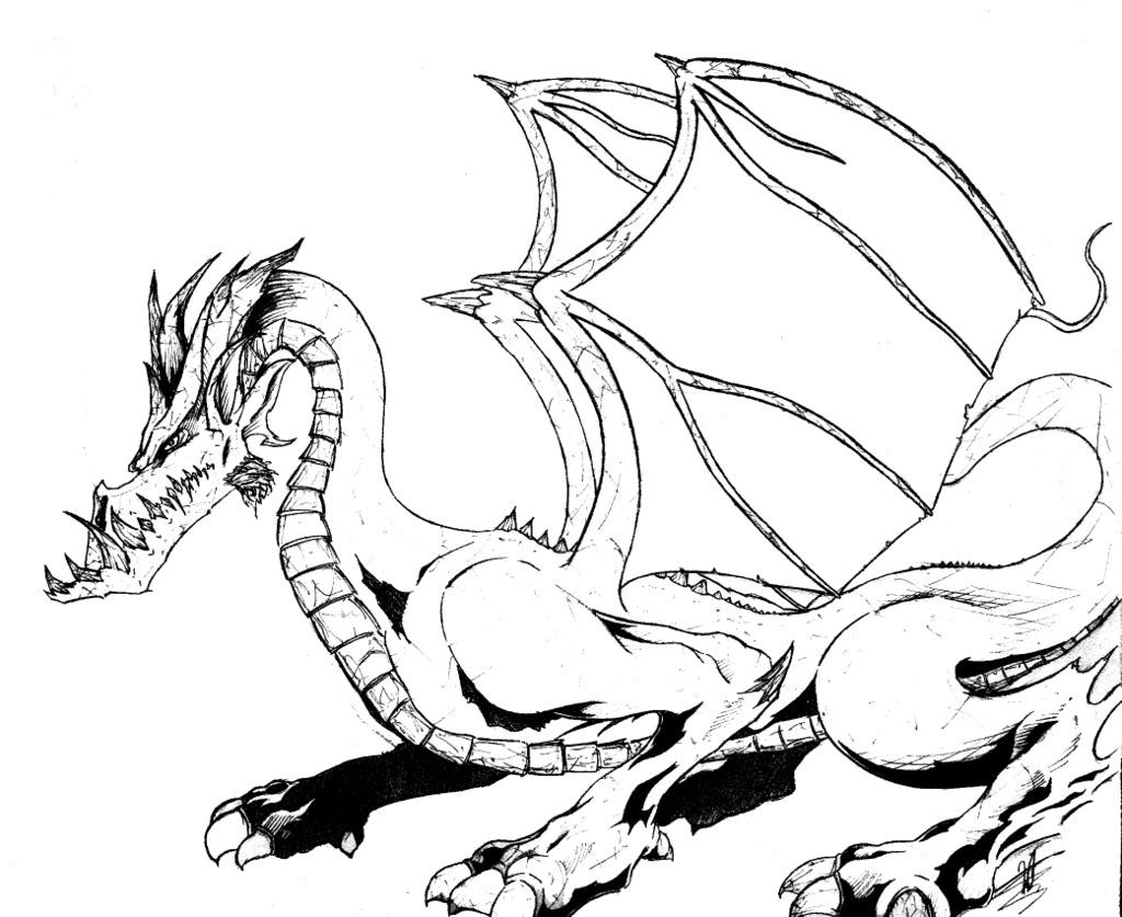 drachen malvorlagen coloriage dragons window color drachen