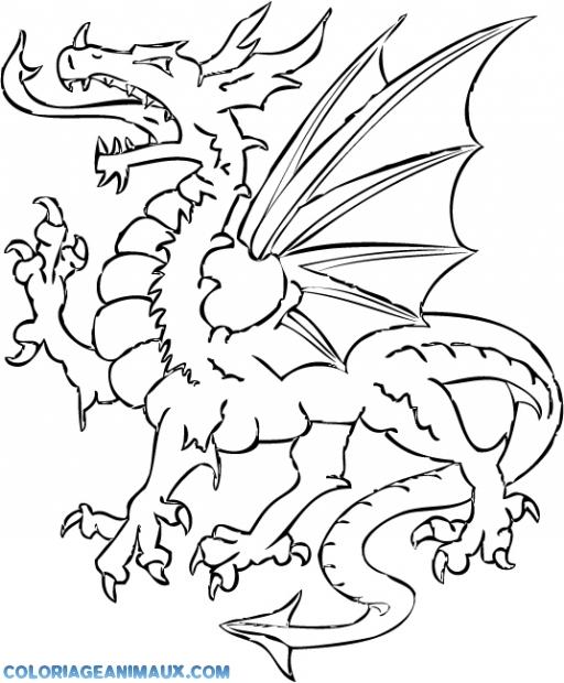 157 dessins de coloriage dragon imprimer sur page 14 - Coloriage de dragon ...