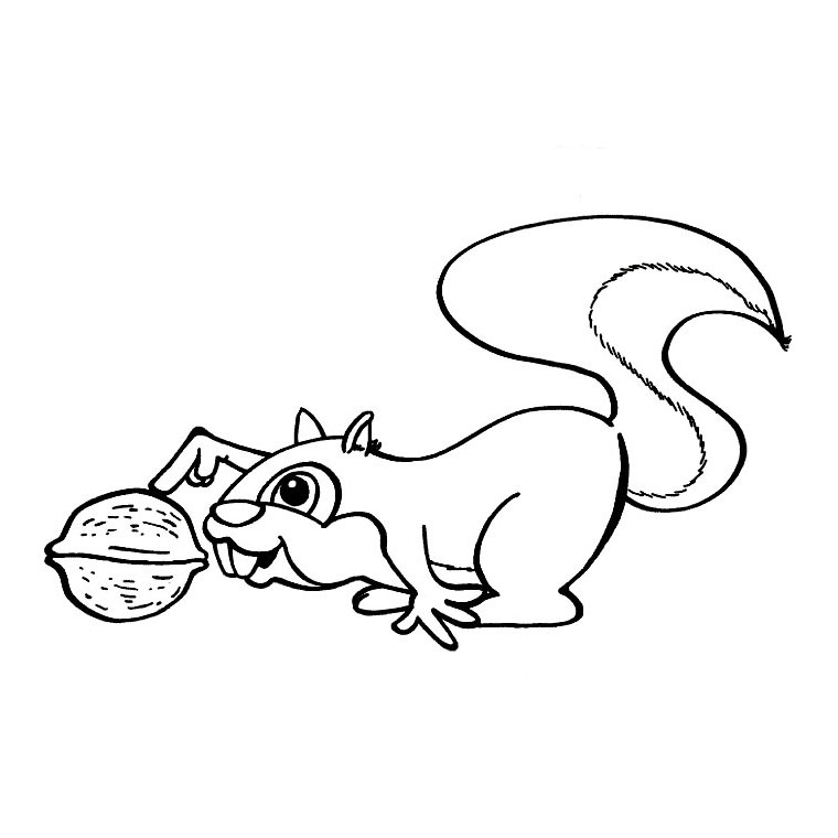 67 dessins de coloriage cureuil imprimer sur page 2 - Coloriage d ecureuil ...