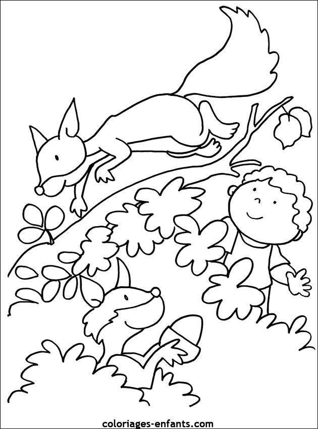 Coloriage Ecureuil Volant.67 Dessins De Coloriage Ecureuil A Imprimer Sur Laguerche Com Page 3