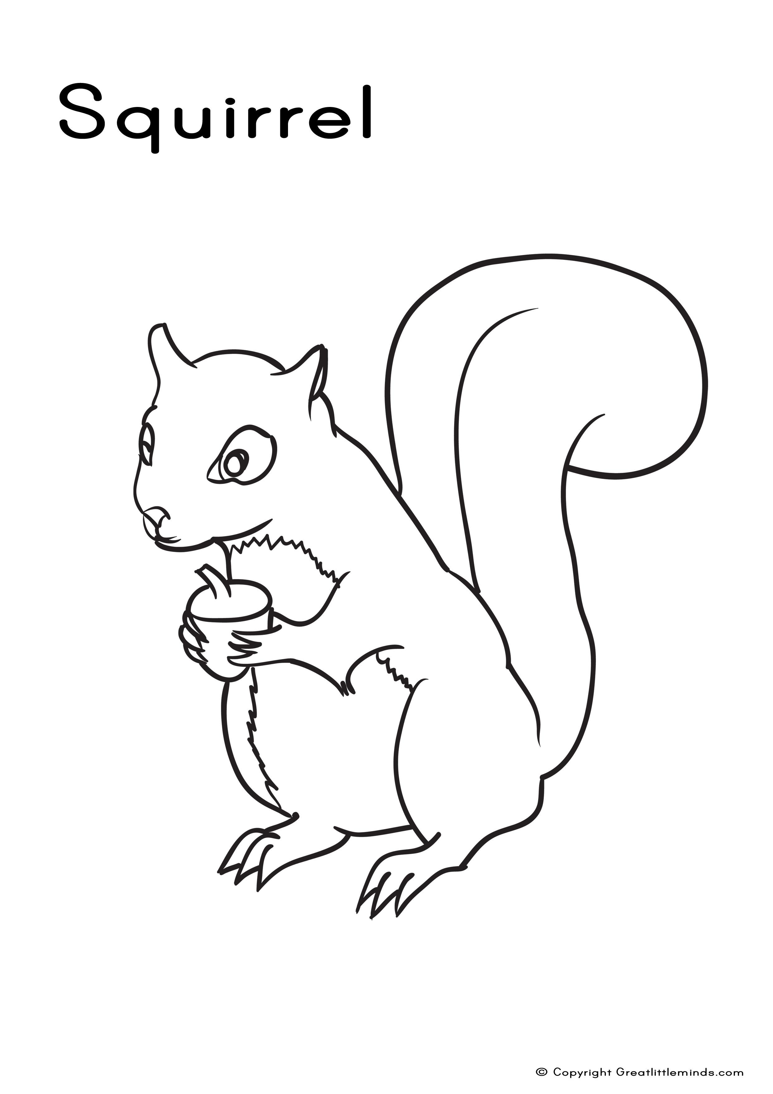 67 dessins de coloriage cureuil imprimer sur page 4 - Coloriage d ecureuil ...