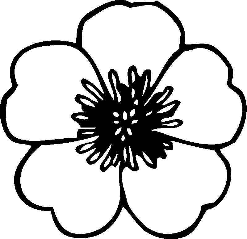 preschool fleur dessins à colorier fleur dessin à colorier