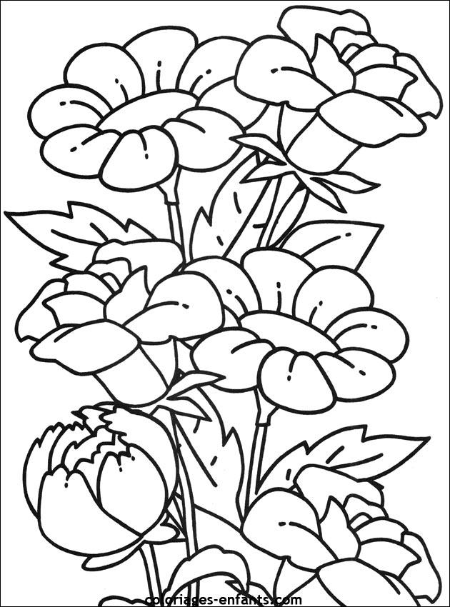 les coloriages d'fleurs à imprimer coloriages enfants.com