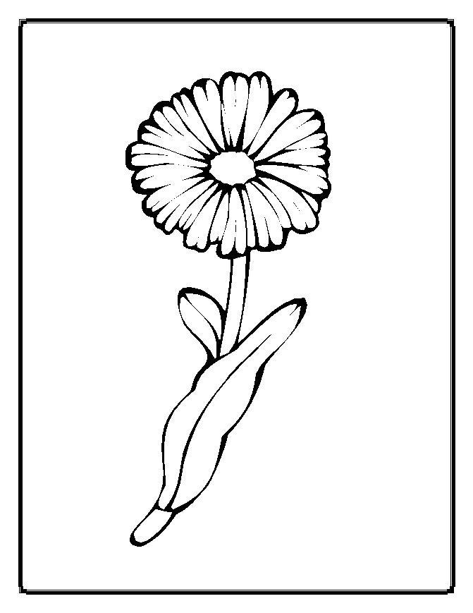 fleur dessins à colorier