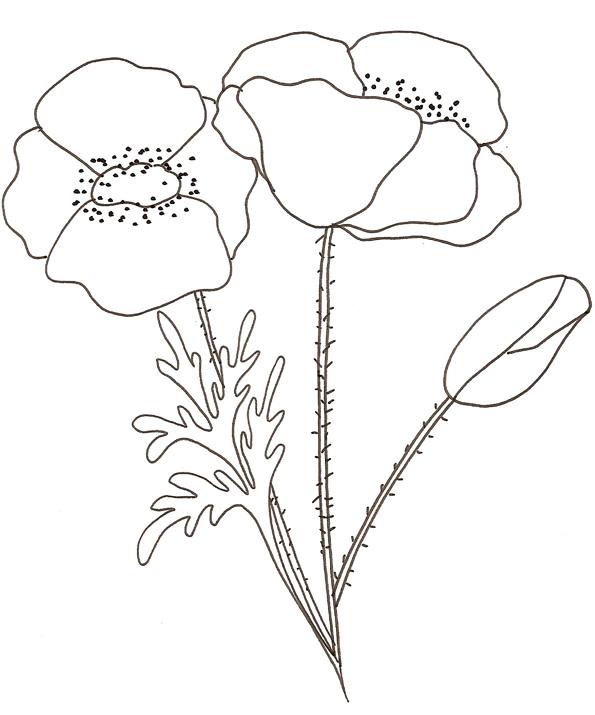 coloriages les fleurs pour enfant