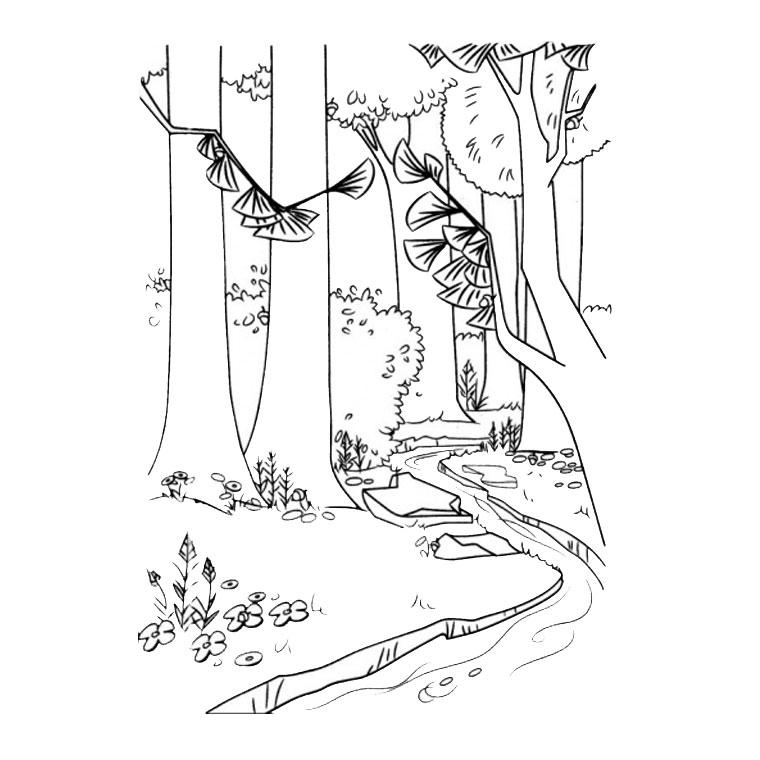 le coloriage forêt pour imprimer le coloriage forêt clique