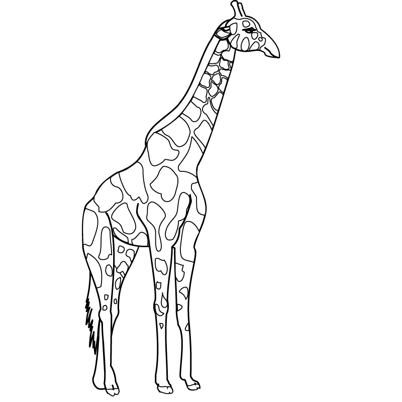 S lection de coloriage girafe imprimer sur page 2 - Coloriage de girafe ...