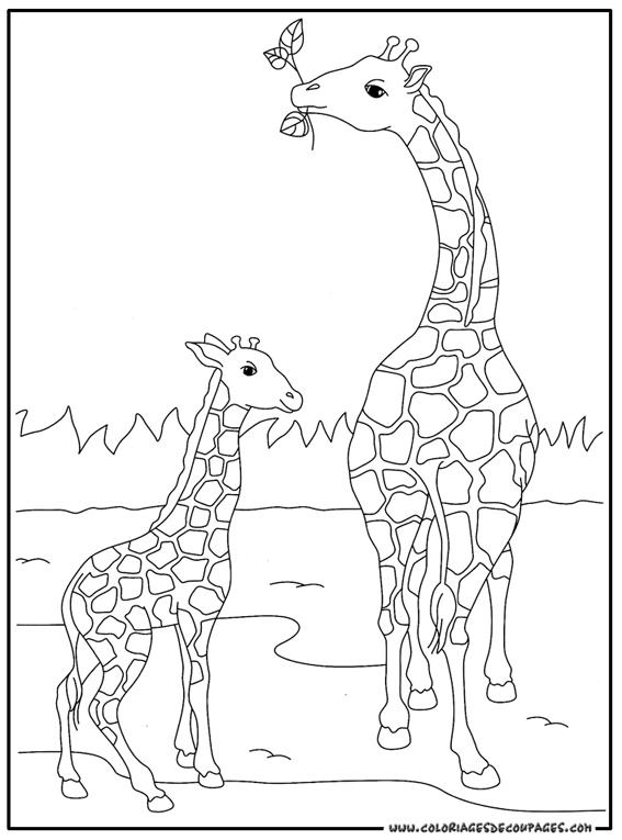 Sélection de coloriage girafe à imprimer sur LaGuerche.com ...