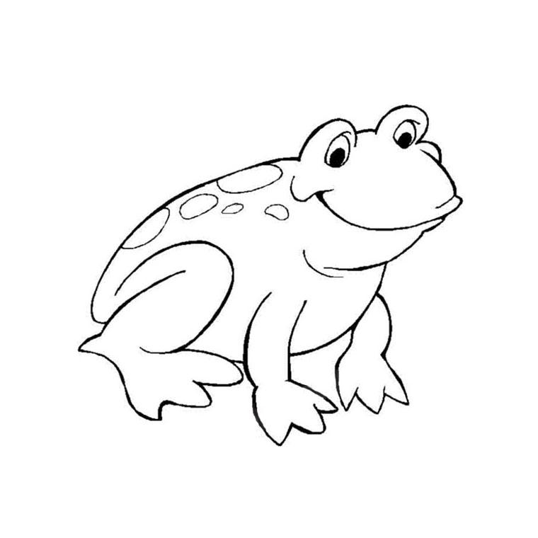 phoà dessineriage grenouille : image gratuite coloriage grenouille