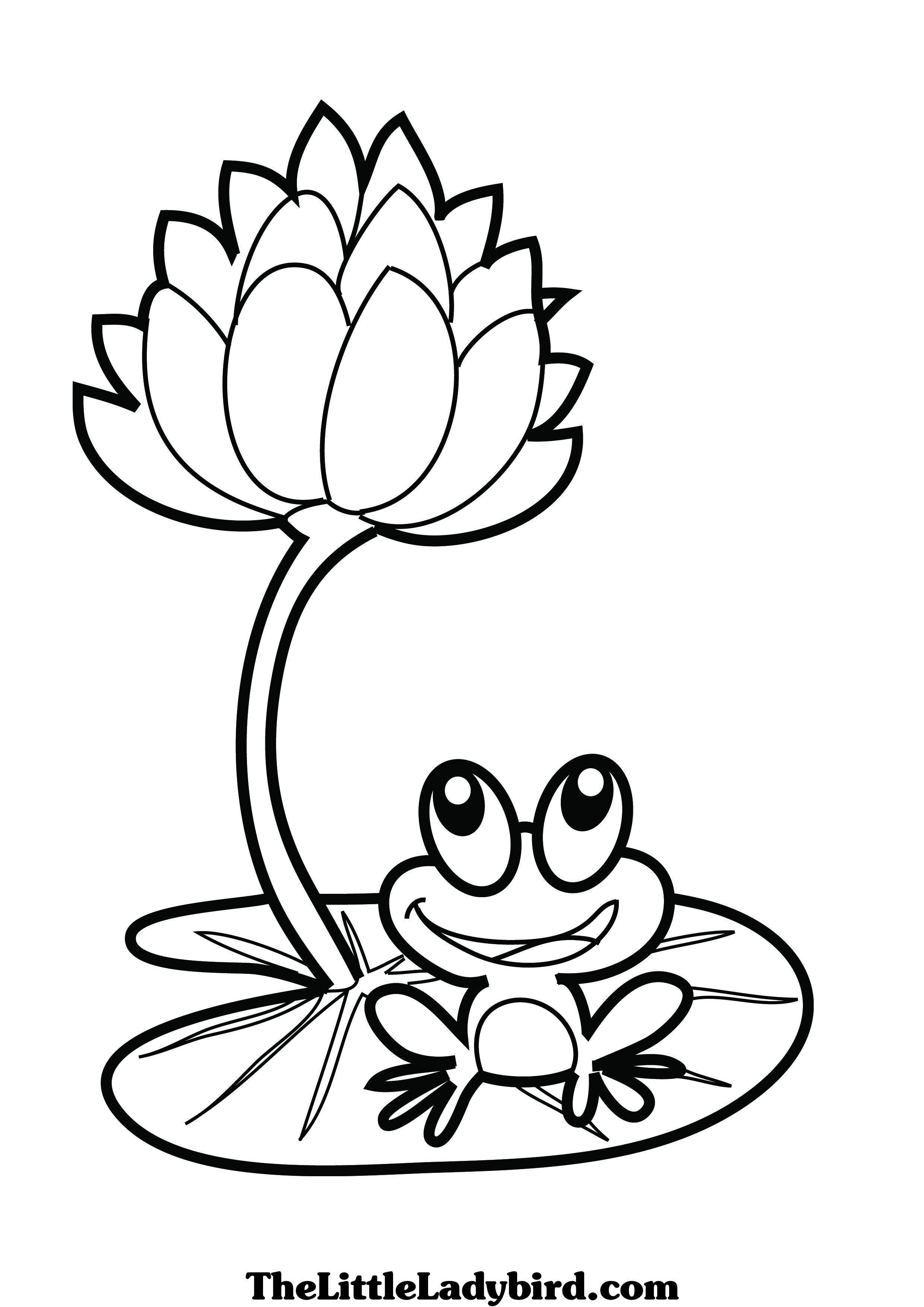 dessin à colorier de a grenouille sitting on a lotus leaf dessins à colorier the