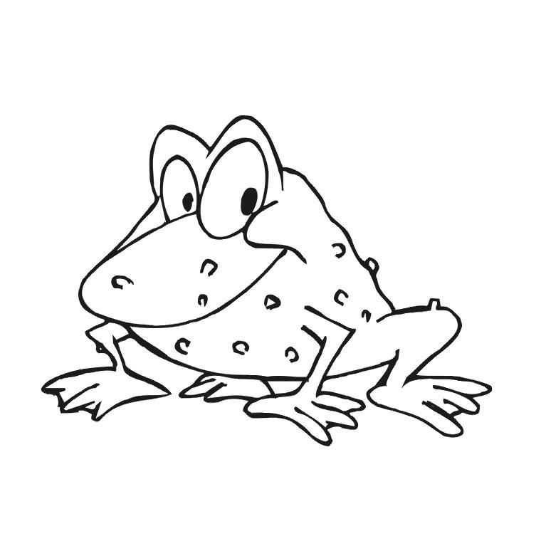 73 dessins de coloriage grenouille imprimer sur - Dessin de crapaud ...