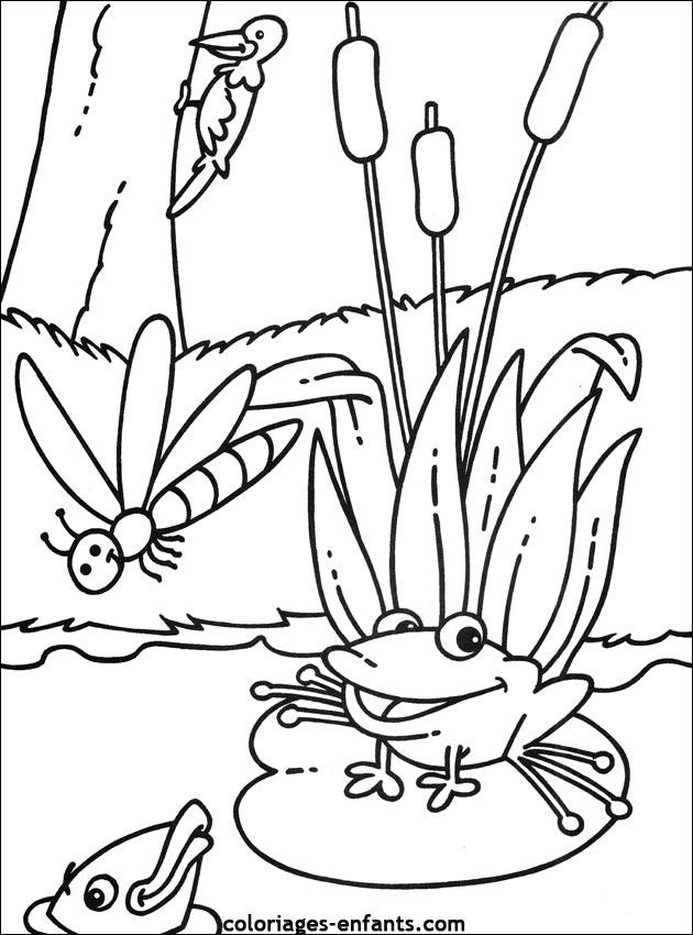 73 dessins de coloriage grenouille imprimer sur page 8 - Grenouille coloriage ...