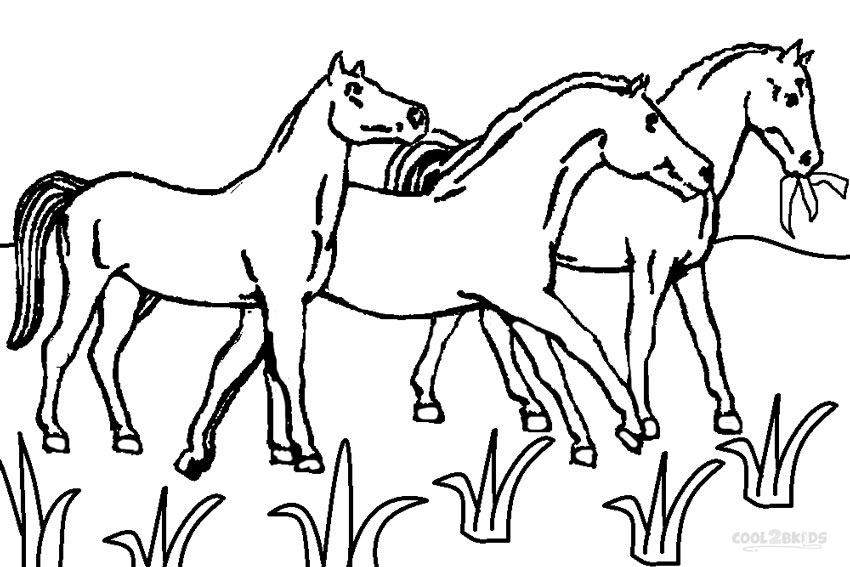 Coloriage horseland gratuit - dessin a imprimer #118