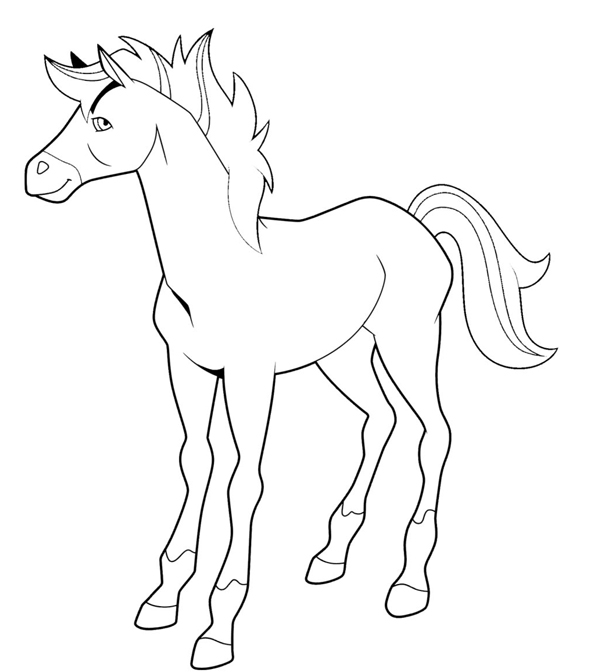 Horseland Scarlet Coloring Pages Related Keywords Suggestions