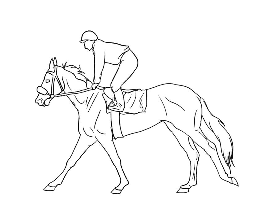 Coloriage horseland gratuit - dessin a imprimer #268