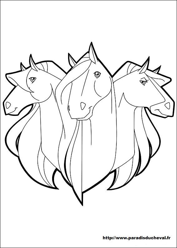 Coloriage horseland gratuit - dessin a imprimer #73
