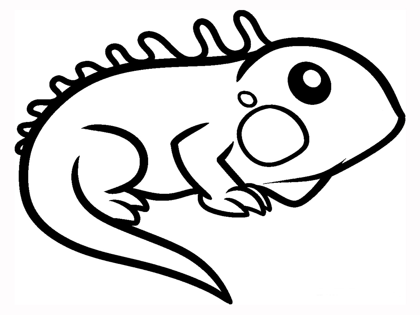 Coloring Pages Of Baby Lizards