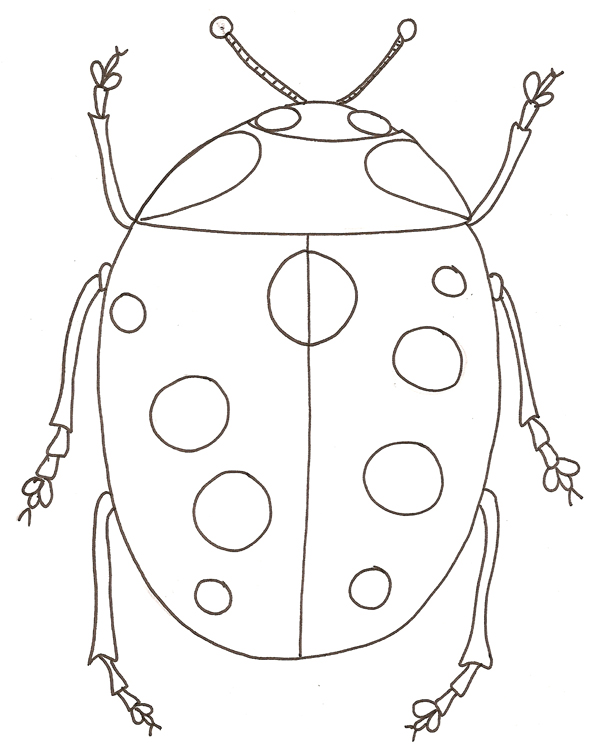 coloriage magique insecte