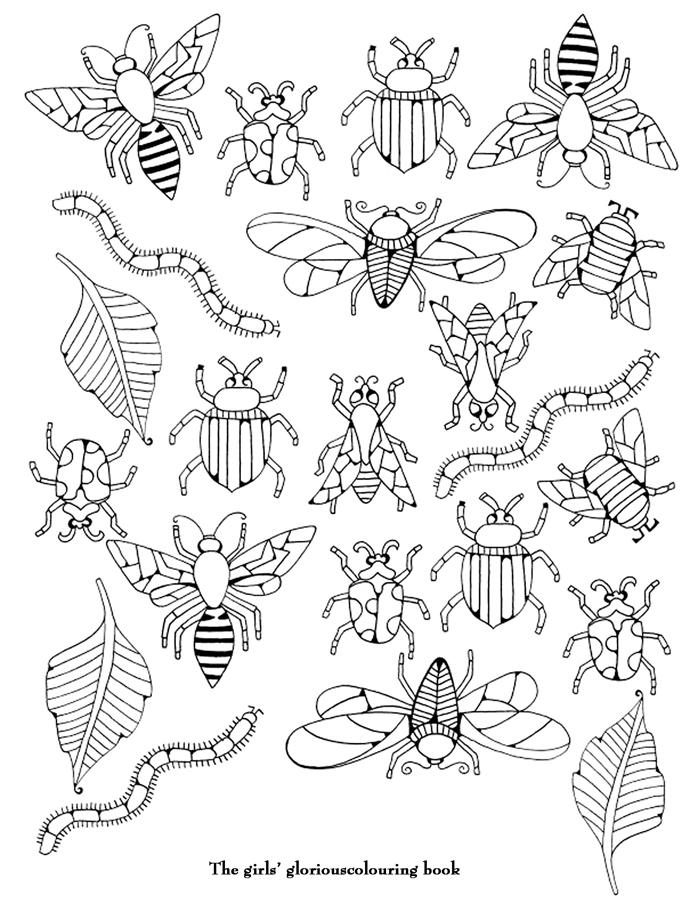 coloriage a imprimer insectes