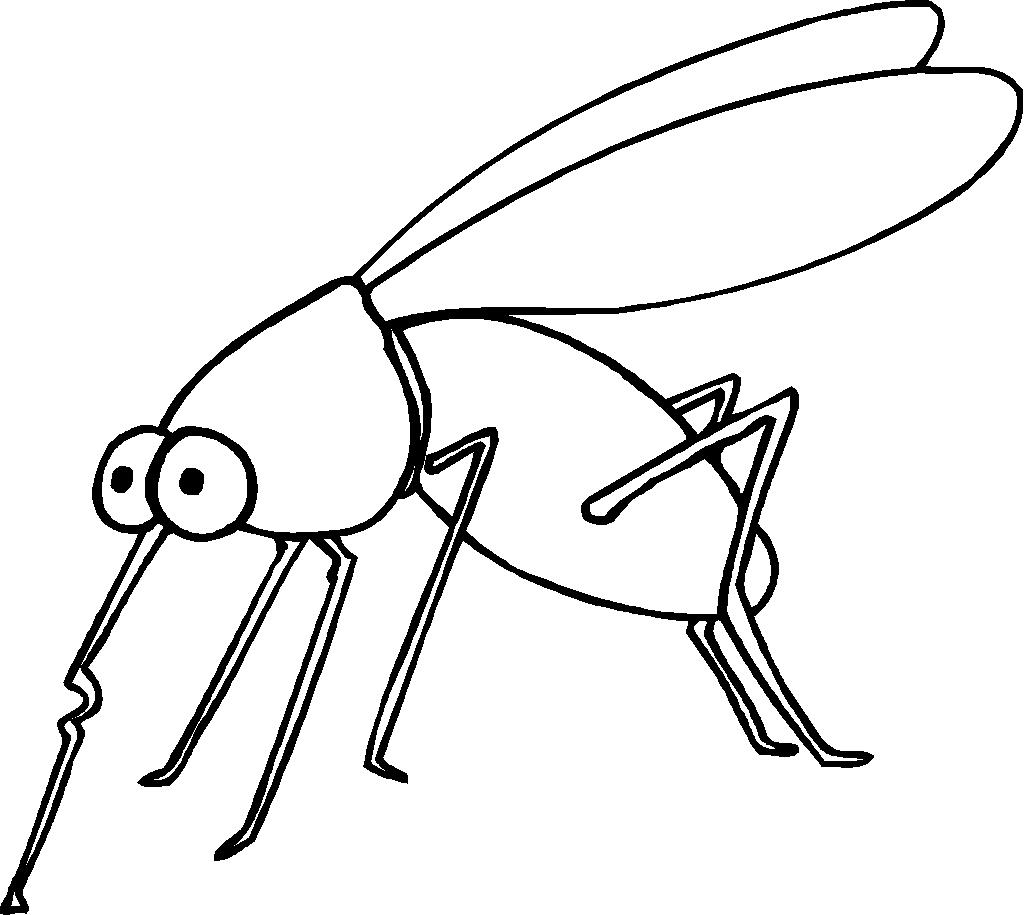 view this mosquito dessin à colorier